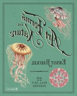 Art Forms in Nature : 22 Pull-Out Posters, Poster by Haeckel